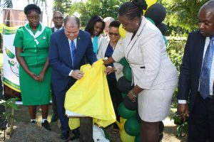 IYPH-Launch-Jamaica-IMG_8688