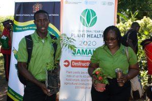 IYPH-Launch-Jamaica-IMG_8702
