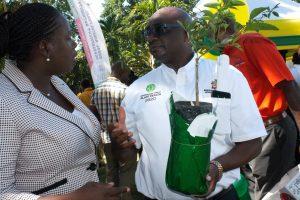 IYPH-Launch-Jamaica-IMG_8709